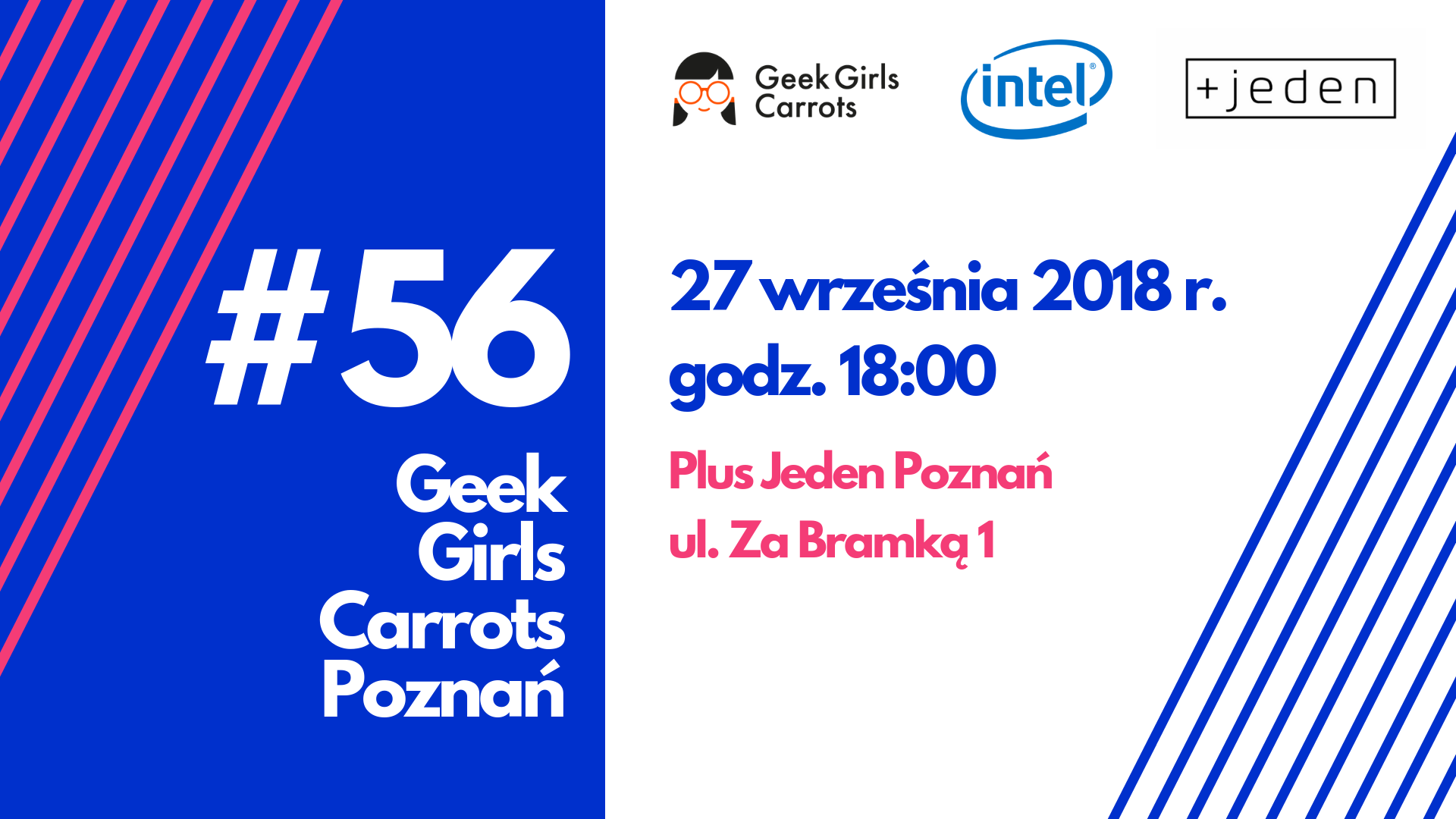 geek-girls-carrots-poznan-56